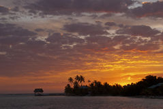 Tropical Caribbean Sunsrise. Stock Photos