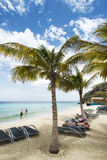 Tropical Caribean beach Curacao Royalty Free Stock Image