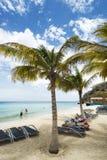 Tropical Caribean beach Curacao. Tropical beach (Kokomo beach) at Vaersenbaai Curacao Royalty Free Stock Image