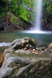 Tropical cascades Stock Image