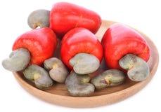 Tropical Cashew Fruit on white background. Fruit royalty free stock photography