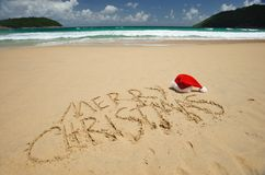 Tropical christmas Stock Image