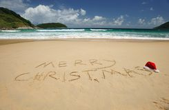 Tropical christmas Stock Images
