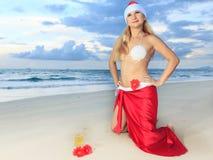 Tropical Christmas Stock Photo