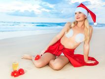 Tropical Christmas Stock Photo