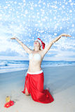 Tropical Christmas Royalty Free Stock Photography