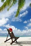 Tropical christmas Royalty Free Stock Photo