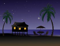 Tropical Christmas Royalty Free Stock Photography