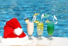 Tropical christmas stock image