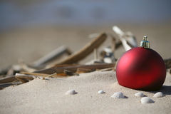 Tropical Christmas background Royalty Free Stock Photos