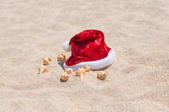 Tropical Christmas on a tranquil beach Stock Image