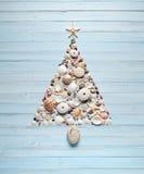 Tropical Christmas Tree Shells Background Stock Photos