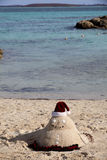 Tropical Christmas Vacation Stock Image