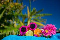 Tropical citrus fruit Stock Photography
