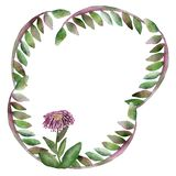 Tropical climbing plants. Watercolor frame, Liana branches with pink flower isolated on white background. Hand painted green stock illustration