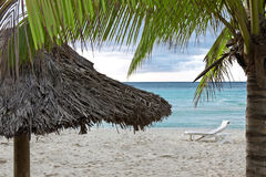 Tropical Coast Stock Photography