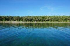 Tropical coast horizon with lush vegetation Stock Photos