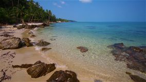 Tropical coast with white sand stock video