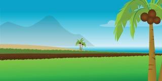 Tropical coastal resort Stock Photography