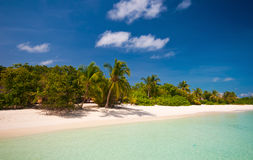 Tropical coastline Royalty Free Stock Image