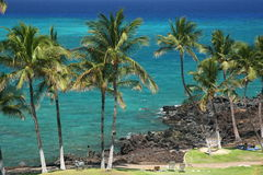 Tropical coastline Royalty Free Stock Images