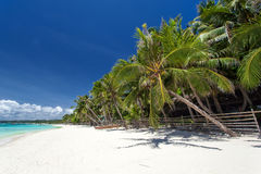 Tropical coastline with beautiful palm and white sand Royalty Free Stock Image