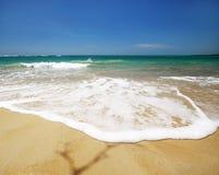 Tropical coastline on caribbean sea Stock Photos