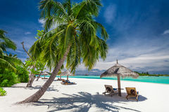 Tropical coastline with palm trees and beautiful sand. Exotic sc Royalty Free Stock Photography