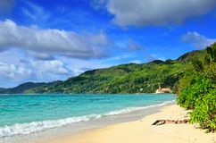 Tropical coastline on Seychelles island Stock Images