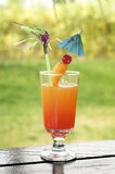 Tropical cocktail on tabletop Stock Photos