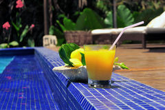 Tropical cocktail. Cocktail drink at pool side Royalty Free Stock Photography