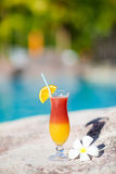 Tropical Cocktail And Frangipani Flower Stock Photography