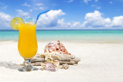 Tropical Cocktail on the Beach. Fruit Cocktail with Orange and Drinking Straw on the Beach with some Seashells and Drift Wood and much Copy Space Stock Image