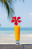 Tropical cocktail on the beach. Orange juice. Thailand. Royalty Free Stock Photography