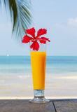 Tropical cocktail on the beach. Royalty Free Stock Photo