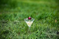 Glass of orange tropical cocktail with cherry. Tropical cocktail on the grass. Refreshing summer drink with red cherry Royalty Free Stock Photo