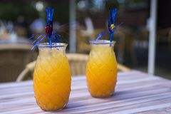 Orange juice cocktail in glass with straw, on terrace table royalty free stock photo
