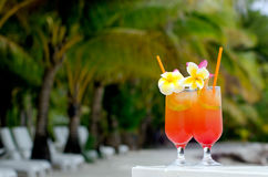 Tropical cocktails served outdoor in Aitutaki Lagoon Cook Island Royalty Free Stock Photography