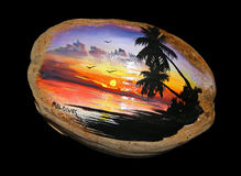 Tropical coconut Stock Images