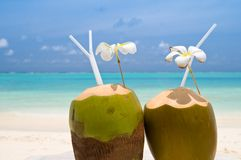Tropical Coconut Cocktail. On the beach Stock Photo