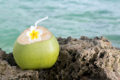 Tropical Coconut Refreshment Royalty Free Stock Photos