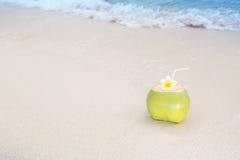 Tropical Coconut Refreshment Stock Photos