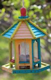 Florida bird feeder in its tropical colors royalty free stock photography