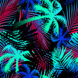 Tropical colored palm leaves seamless pattern.  Royalty Free Stock Image