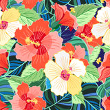 Tropical colorful hibiscus pattern Stock Photo