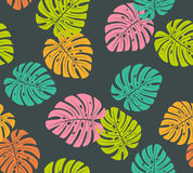 Tropical colorful monstera leaves seamless pattern Stock Image