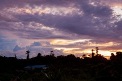 Tropical colorful vibrant sunset clouds and trees. Background royalty free stock image