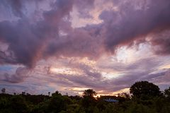 Tropical colorful vibrant sunset clouds and trees. Background royalty free stock photos