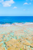 Tropical colors of coral reef, sea and sky Royalty Free Stock Photo