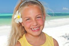 Tropical com flor do frangipani Imagem de Stock Royalty Free